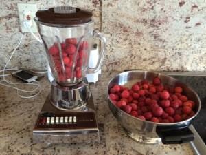 Kousa Dogwood berries in blender