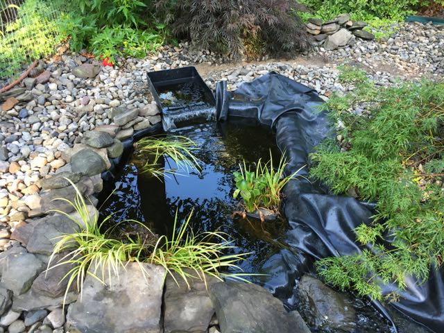 Troubleshooting a Leaky Vinyl Liner Pond