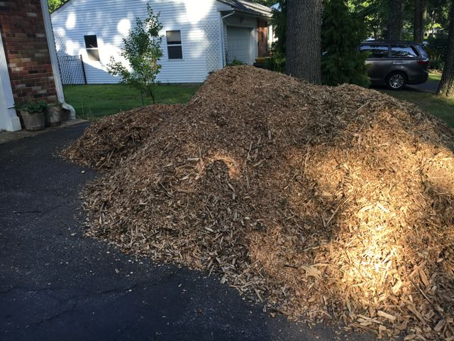 Free Mulch – Free Tree Trimmer Wood Chips