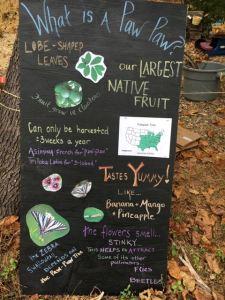 Fredrick Paw Paw Festival 2016
