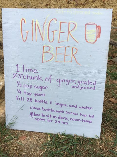 Ginger Beer at the Paw Paw Festival
