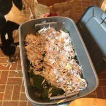 Red Wiggler Worm Compost Bin