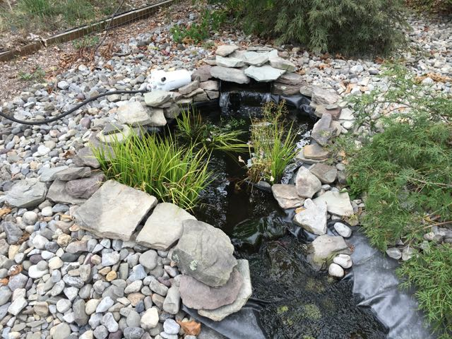 Fish Pond Winterization