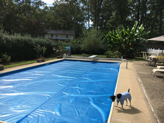 Winterizing the In Ground Pool