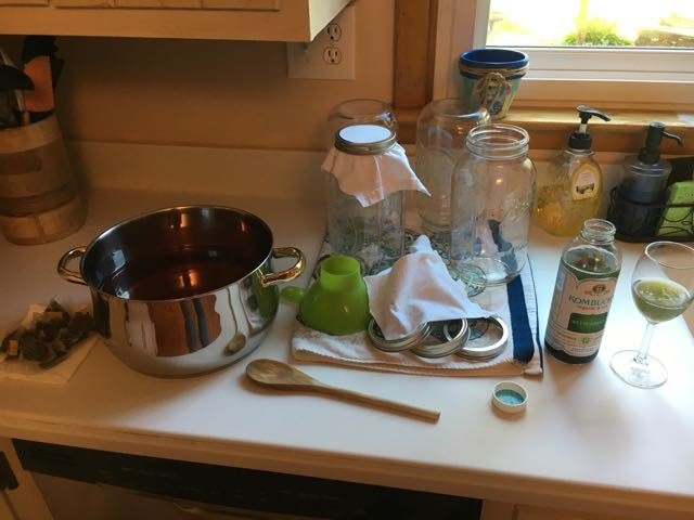 How to Make Kombucha Brewing the First Batch