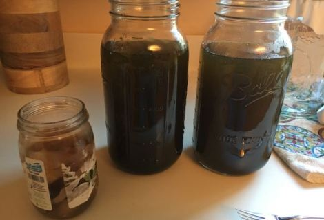 How to Make Kombucha Part 1