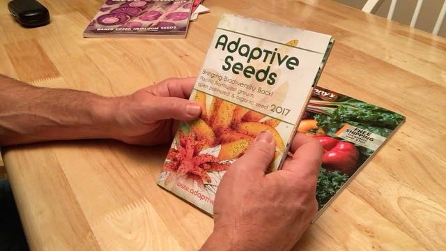 Adaptive Seeds