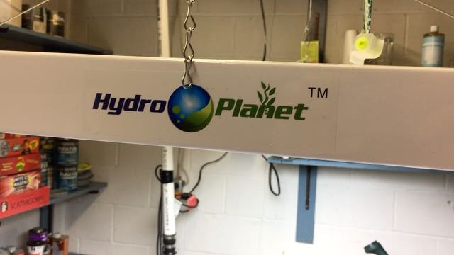 Hydroplanet Fluorescent Grow Light Product Review