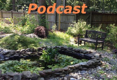 Epi086 – Large Rainwater Harvesting System Upgrade part 4, Harvesting Honeyberry