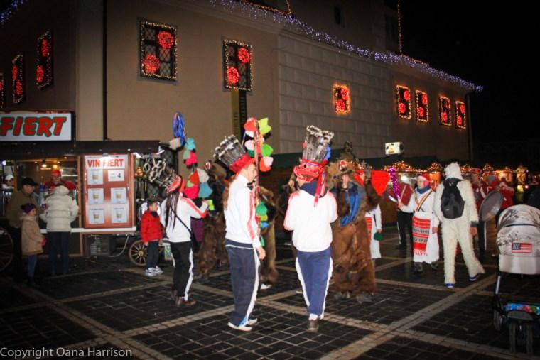 Brasov Romania Christmas Downtown Ursul The Bear