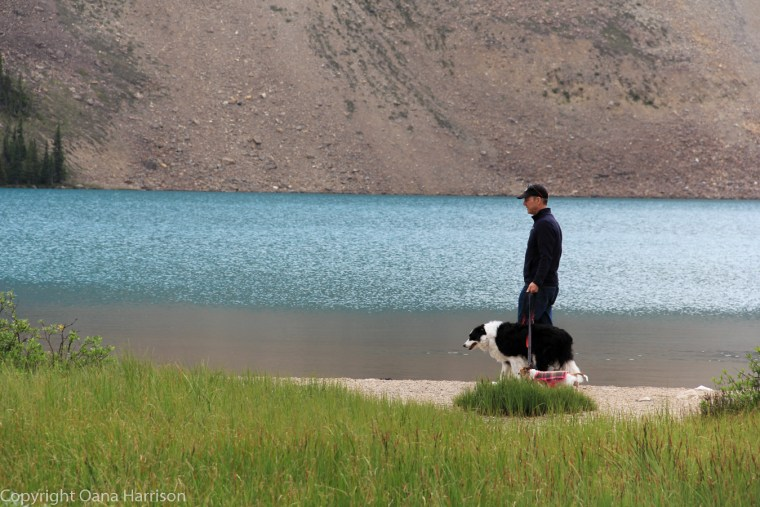 David-with-dogs-Crawfoot-Mountain-Bow-River-Canada