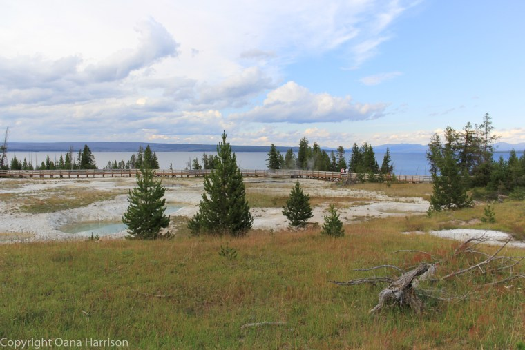Bluebell-pool-geyser-Yellowstone-and-lake