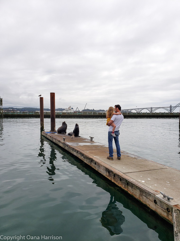 Newport-OR-man-and-child-looking-at-sea-lions-on-the-dock