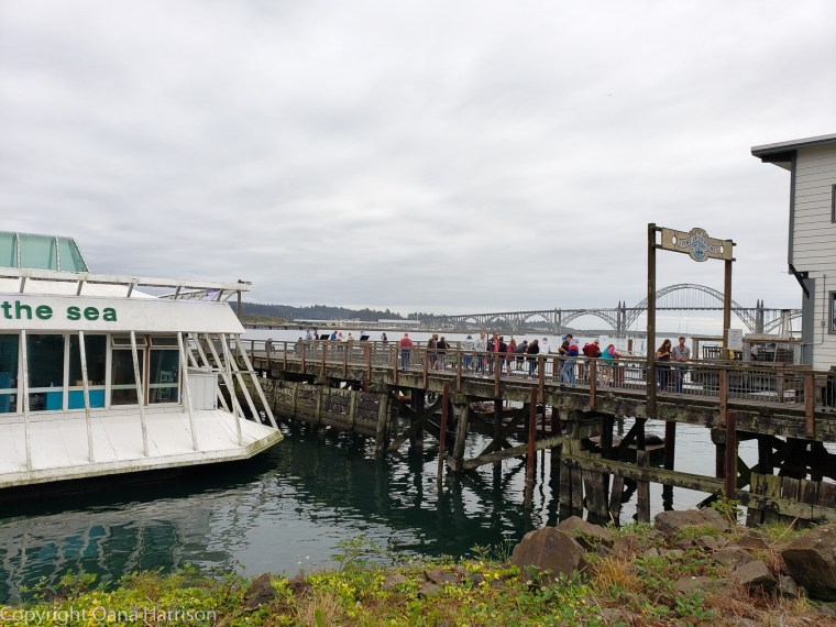 Newport-OR-visiting-crowds