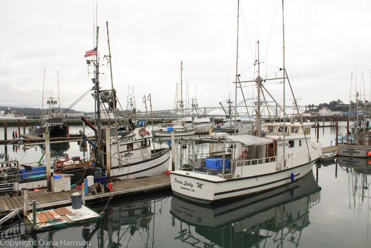 Newport-OR-boats-in-harbor