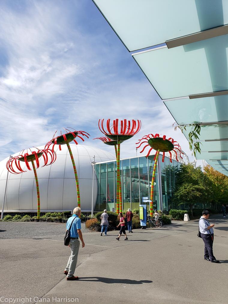 Flower-art-installation-Space-Needle-Seattle-WA
