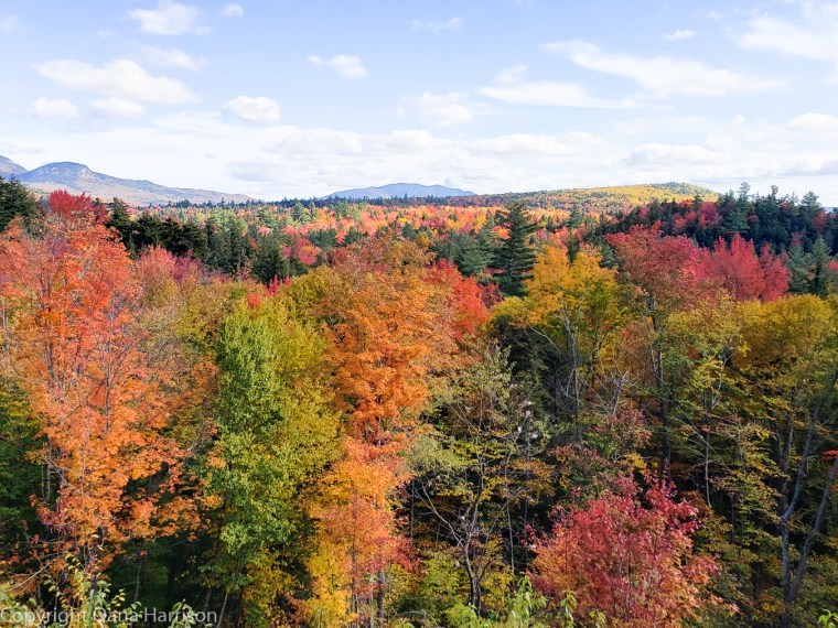 Fall colors in New Hampshire and White Mountains