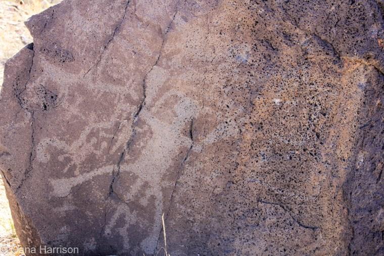 Petroglyphs Albuquerque New Mexico