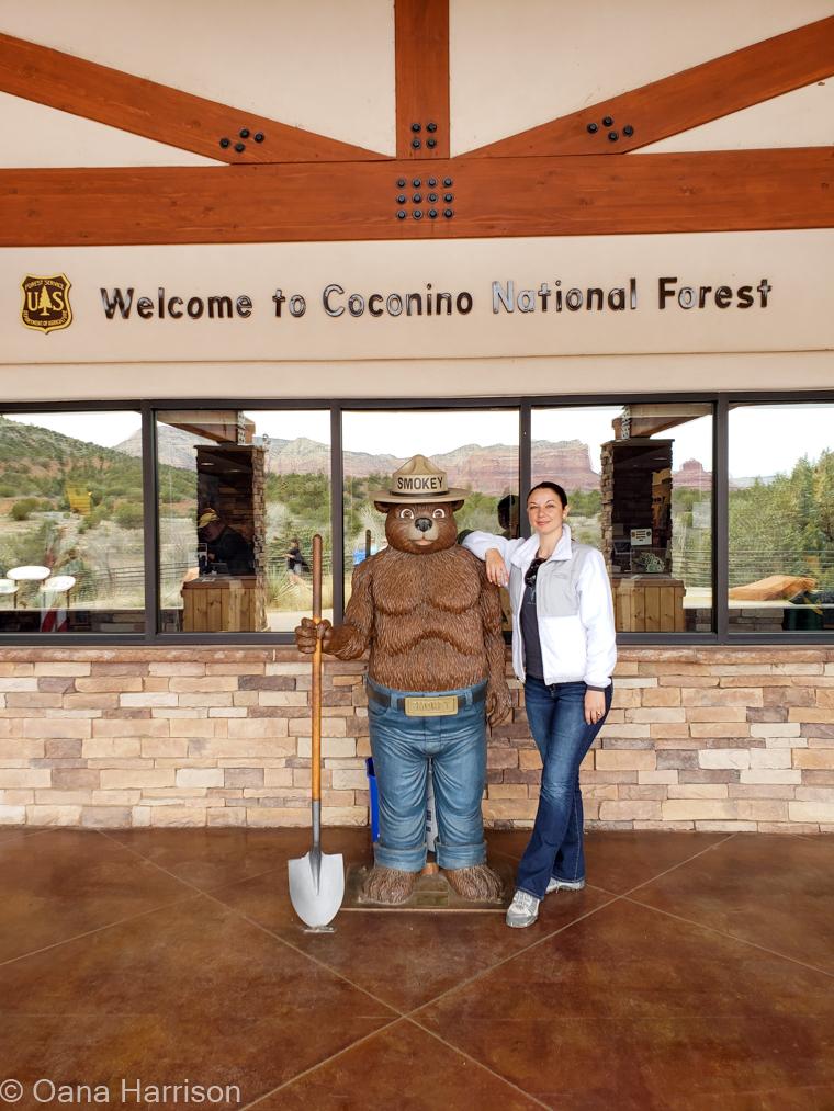 Red Rocks Sedona Arizona, Coconino National Forest Welcome Center