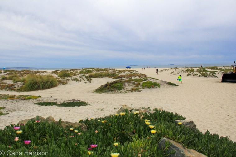 San Diego, California, Coronado beach and homes