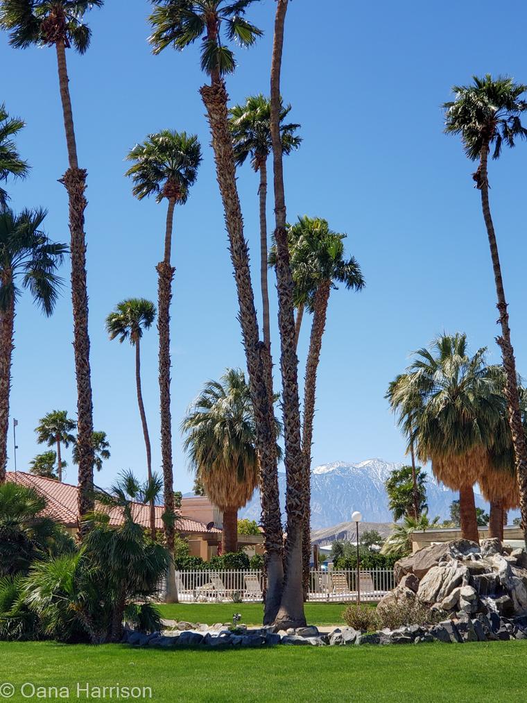 Sky Valley Desert Hot Springs CA,
