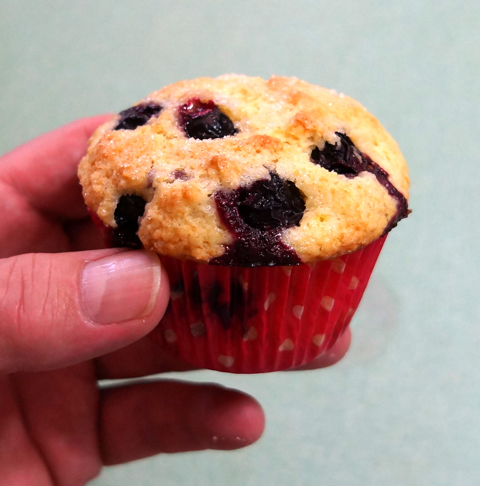 all the best muffins and quick breads