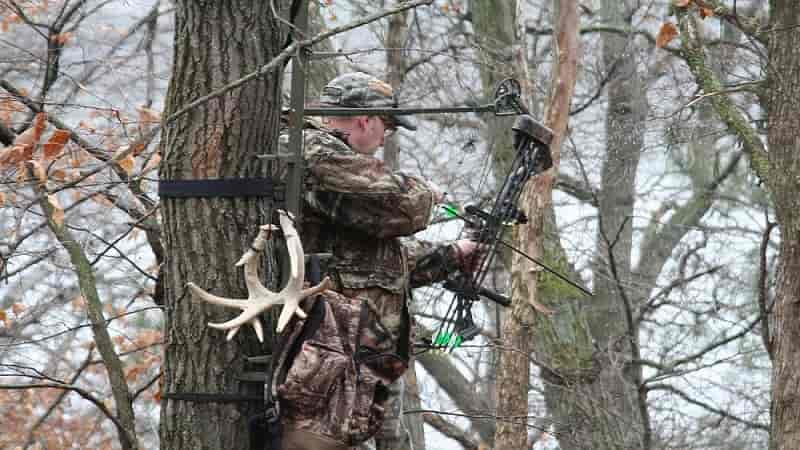 Why is a Tree Stand Perfect for Hunting