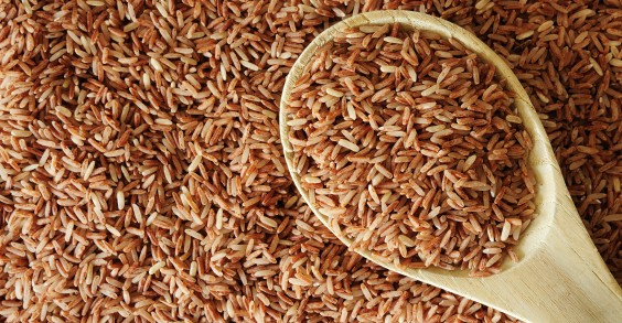 Rice protein is a great option for vegans and those with dairy allergies.