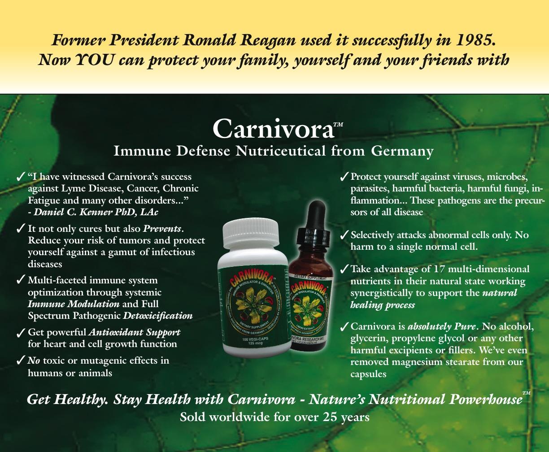 carnivora_2009_v4