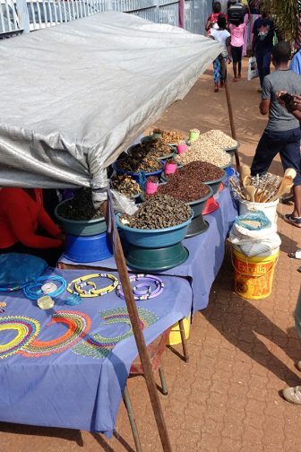 Entomophagy is widely accepted in parts of Africa. Image: Julie Lesnik