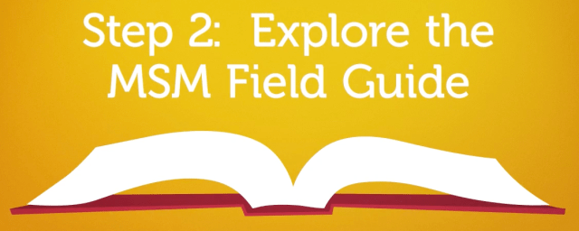 MSM Field Guide Writing
