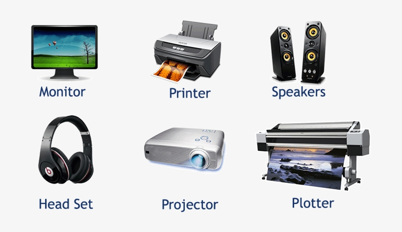 Computer Input, Processing, Output and Storage Devices