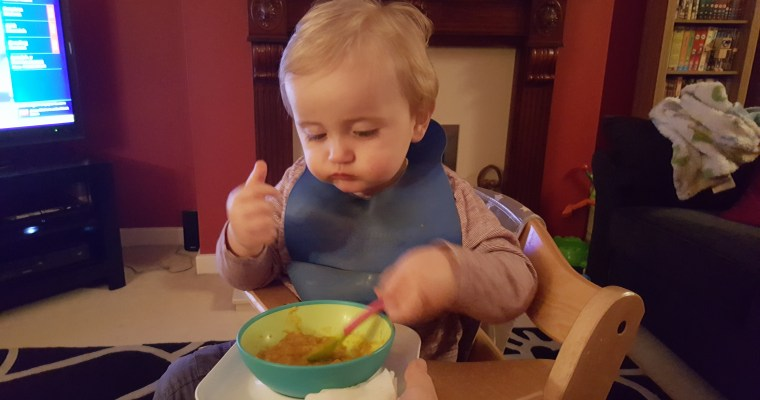 Top Tips for Toddler Feeding with HiPP Organic