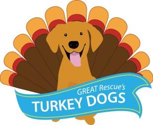 GREAT-TurkeyDog-TurkeyTail