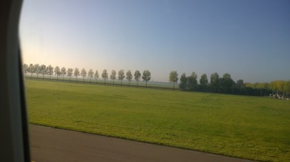 Trees along the runway in a misty Amsterdam.