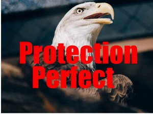 Eagle Protection Perfect With Text