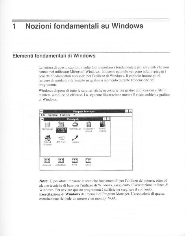 Windows30