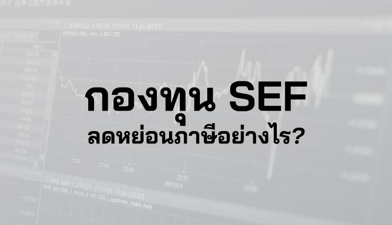 กองทุน SEF คือ กองทุนหุ้นยั่งยืน ซื้อกองทุน SEF ลดหย่อนภาษี Sustainable Equity Fund ซื้อ SEF