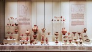 Large exhibition of case with ceramic bases and statuettes