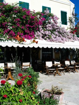 Flowers frame a café in Fiskardo