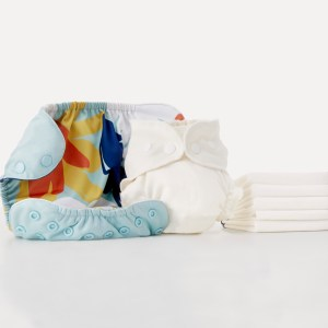 Esembly Cloth Diaper System