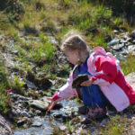 playing-outside-in-stream