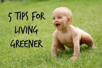 5 Tips for Living GREENER