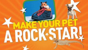 National Geographic Kids Funniest Pet Contest  #NGKInsider