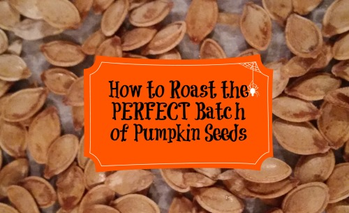 How to roast the perfect batch of pumpkin seeds! #pumpkin #howto #fall #recipes