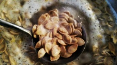 Roasting pumpkin seed that are delicious! #fall #pumpkin #recipes #autumn