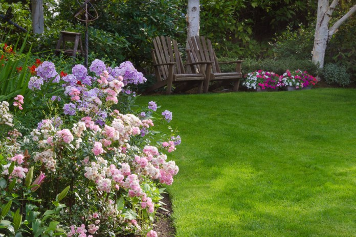 Cooling Your Home With Your Lawn: Dandelion's New Project