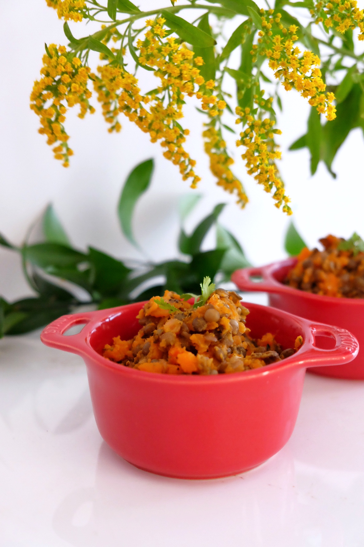 Mashed sweet potatoes with carrots and lentils