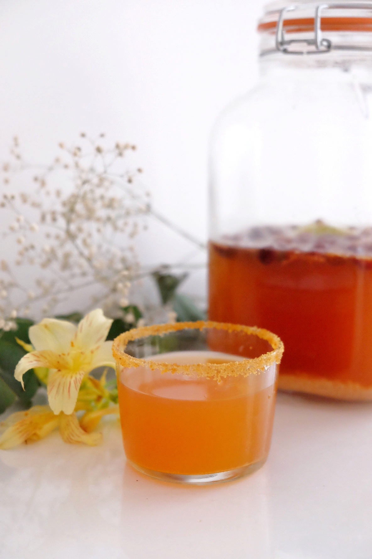 Water Kefir, an antibiotic drink