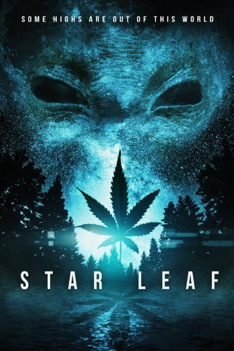 Star Leaf Artwork STAR LEAF